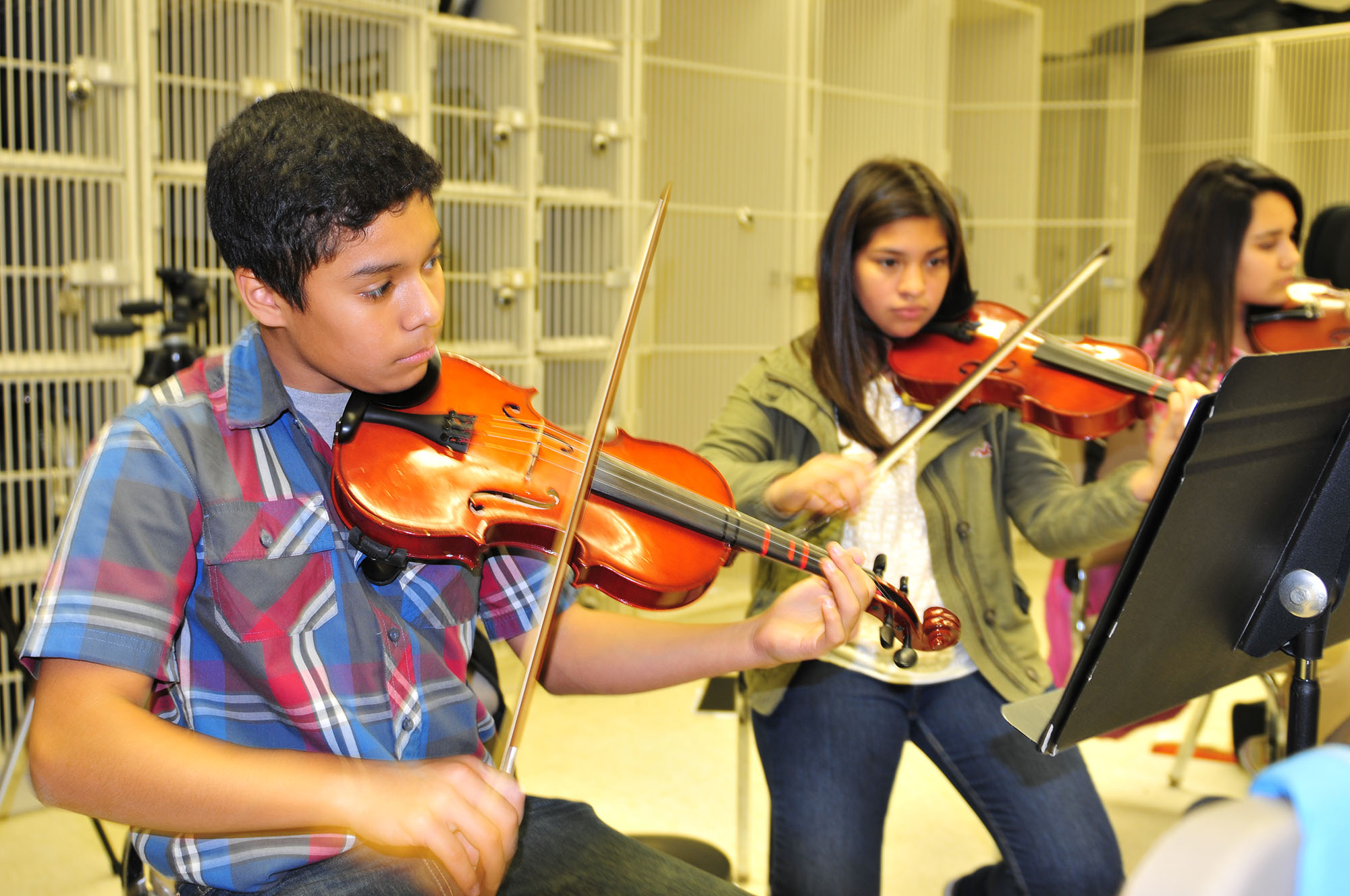 Vernon Orchestra program grows as students hit all the right notes at music competitions
