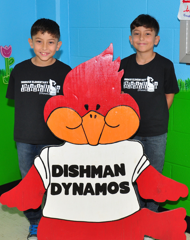 Dishman SOW2