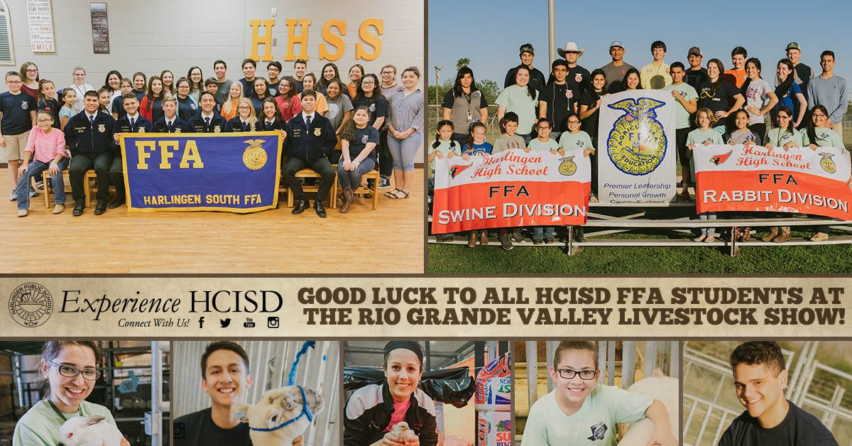 HCISD's FFA students round up awards at 2017 RGV Livestock Show
