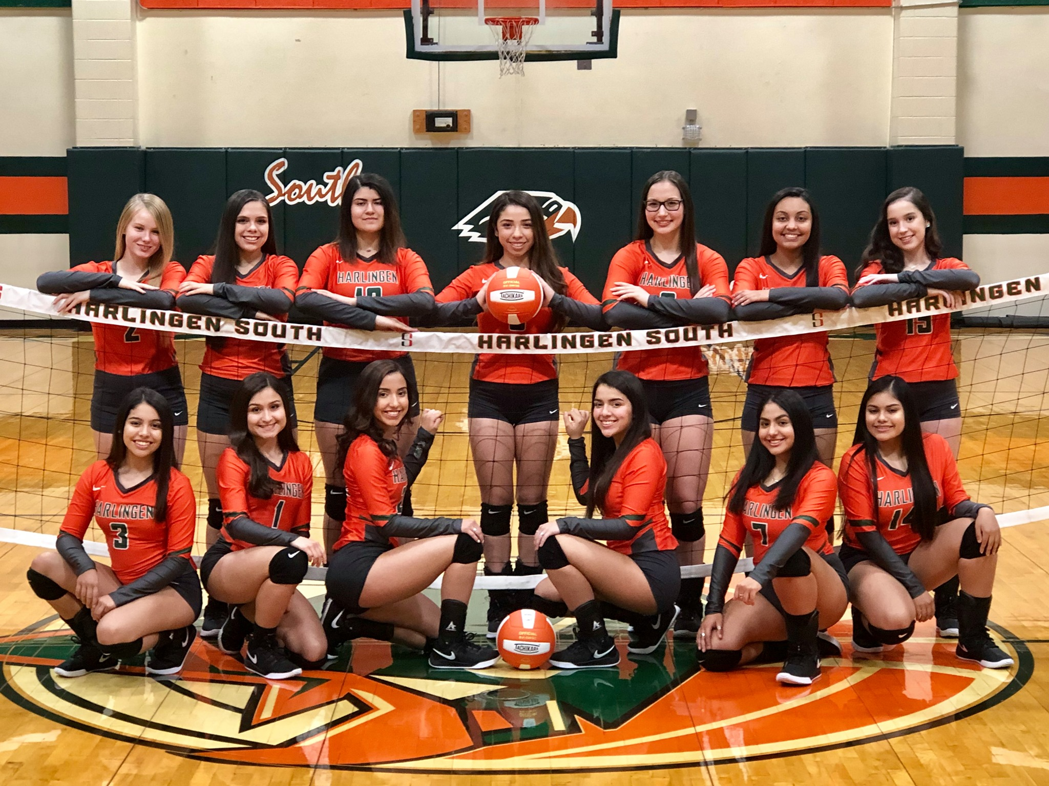 Lady Hawks Volleyball celebrates bi-district title